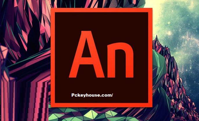 Adobe Animate C-C